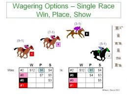 Win Place Show How To Bet On Horses Getting Out Of The