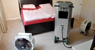 27+ Bed Bug Treatment Heat Gif