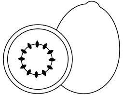 Apple Coloring Pages Vlachikameteoinfo
