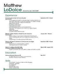 Copy And Paste Resume Templates Beauteous Free Resume Templates To Copy And Paste Copy Paste Resume Templates