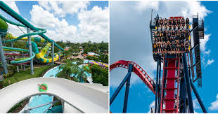 article featured image busch gardens