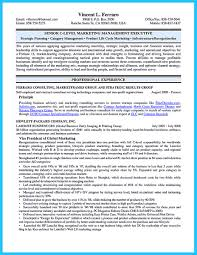 Executive Resume Examples Writing Tips Ceo Cio Cto Resume Templates