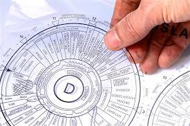 Dr Bernard Jensen Iridology Chart A4 Iridology Chart Transparency