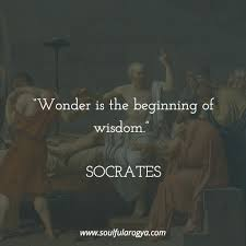 Wonder Is The Beginning Of Wisdom Socrates 1024x1024 Quotesporn