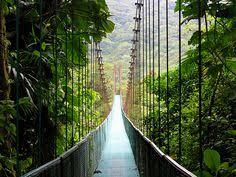 Treehouse Monteverde Costa Rica