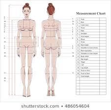 Women S Measurement Chart Body