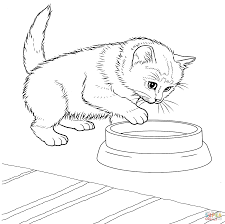 Small Picture Kitten coloring page Free Printable Coloring Pages
