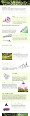 Grow Light Schedule Growing Plants Under Lights Everything You Need To Know