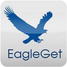 """Résultat de recherche d'images pour """"EagleGet برنامج"""""""