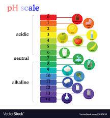 Ph Scale Diagram With Corresponding Acidic Or