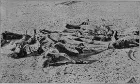 Image result for british atrocities in india