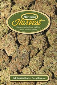 Cannabis Online Shopping In Pakistan - Usaimported.pk