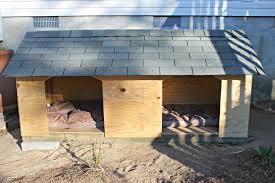 diy house plans. DIY Double Dog House For Large Dogs Diy Plans