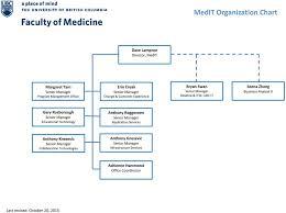 Medit Organization Chart Pdf Free Download