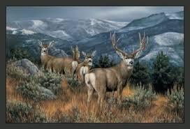 wildlife mountain mule deer area rug