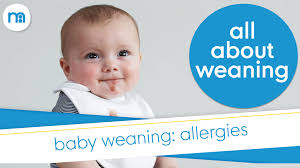 What foods can cause allergies in babies? | Mothercare - YouTube