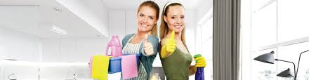 House Cleaner Job Residential House Cleaning Dawn To Dusk Macomb County Mi