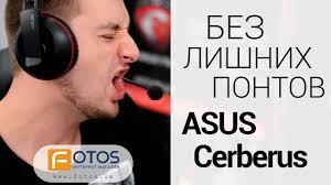 Обзор <b>игровых наушников ASUS Cerberus</b>. Сила в простоте ...