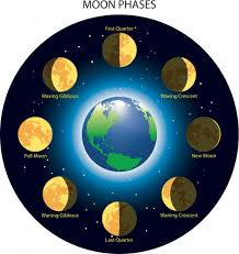 parts of the sun sun and moon worksheet edplace