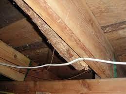 repairing sagging floor joists