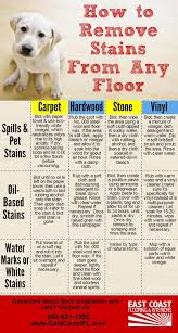 the way to properly clean each type of stain or mess varies based on the type of flooring spills pet stains