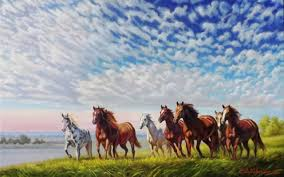 wild horses running field wallpapers and stock photos