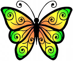 spring butterfly clipart. Beautiful Spring Google Butterflies Clipart 1 Intended Spring Butterfly