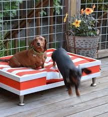 diy outdoor dog beds