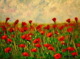 2016 37 field of poppies 1