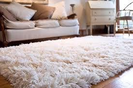 10 best area rugs for your modern home