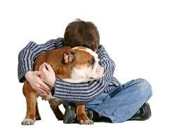 Zachowania ludzi których psy nienawidzą, nieakceptowane zachowania. Rejestracja zwierząt, psa i kota.