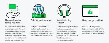 Godaddy Wordpress Hosting Review Can They Manage It 2019