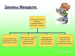 Презентация на тему МОКУ Покровская средняя общеобразовательная  6 Законы