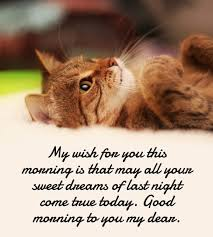 Good Morning Love Quotes For Her Best 48 Beautiful Good Morning Love Quotes For Her