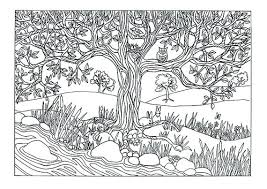 nature colouring pages for adults. Interesting Pages Best Coloring Pages For Adults Free Printable Nature  Tree River Scene  Throughout Nature Colouring Pages For Adults G