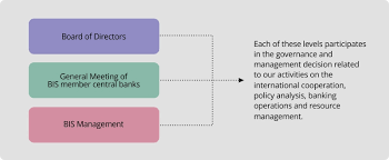Governance And Organisation