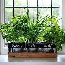 herb garden planters wooden herb garden planters herb garden planters hanging herb pots indoor herb pots herb garden planters