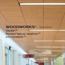 fine line interiors acoustic ceilings
