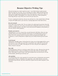 Some Samples Of Resume Painting Resume Examples Samples Resume Objectives Best Sample