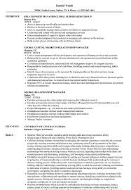 Client Relationship Management Resume Global Relationship Manager Resume Samples Velvet Jobs