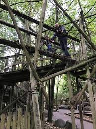 Wiltshire 2017 The Top 20 Treehouses For Rent In Wiltshire Longleat Treehouse