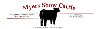 Myers Show Cattle - IN
