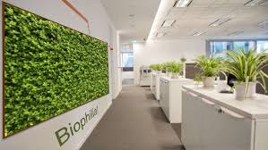 google office in pittsburgh. GOOGLE\u0027S BIOPHILIC Google Office In Pittsburgh L