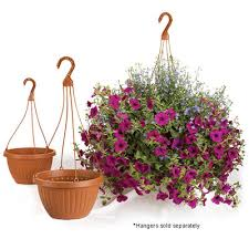 Centabella Hanging Pots (Hangers Sold Separately) - Containers for Schools