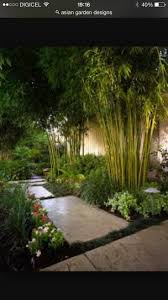awesome bamboo garden with outdoor lighting