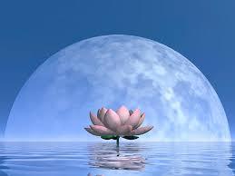 Resultado de imagem para full moon magic