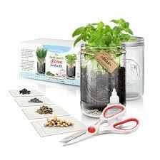 Kitchen Garden Herbs Amazoncom Herb Lovers Kitchen Garden Kit By Abundant Living