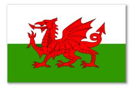 Image result for welsh flag