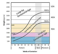 Small For Gestational Age Wikipedia