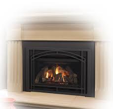 Heatilator Novus Evolution Gas FireplaceFireplace Heatilator